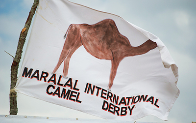 Flag with camel drawing waves in the wind
