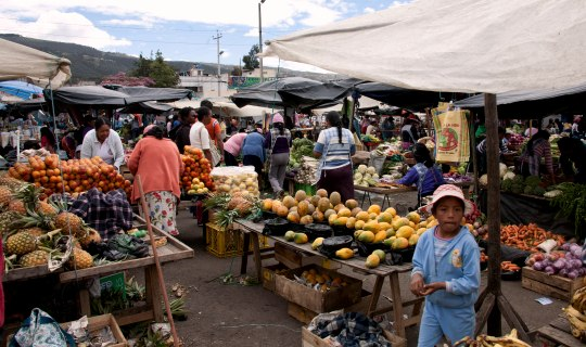 Busy market in Ecuador with many carts selling fruit and vegetables.
