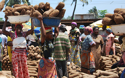 Ghanian women carry yams ontop of their heads at local market