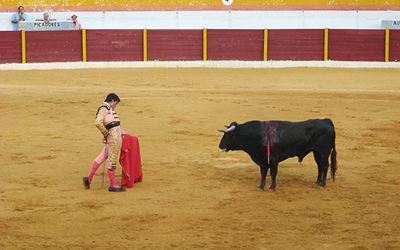 Bullfight in arena in Spain