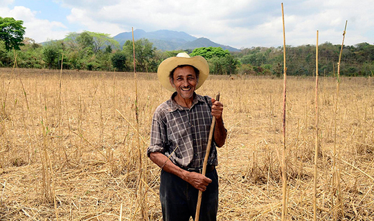 A maize farmer in Jamastran, Honduras poses for the camera
