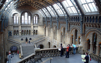 Interior of natural history museum in london